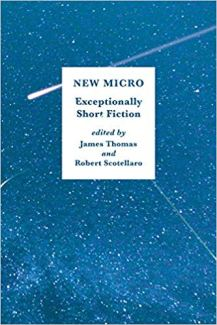 22. New Micro - Exceptionally Short Fiction