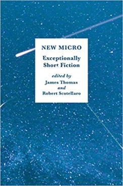 23. New Micro - Exceptionally Short Fiction